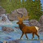 Barb's Elk