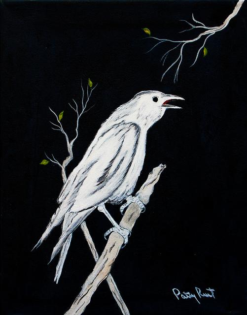 the white crow - photo #18