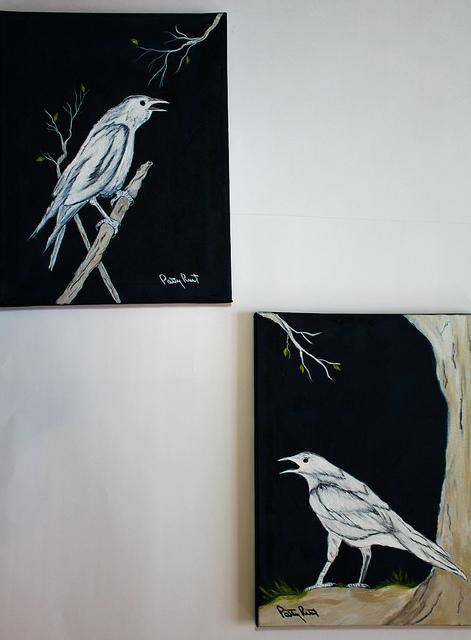 white crows